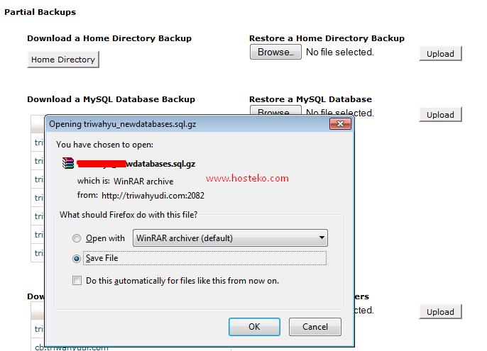backup database 2
